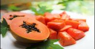 Papaya multicolor